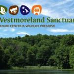 Westmoreland Sanctuary