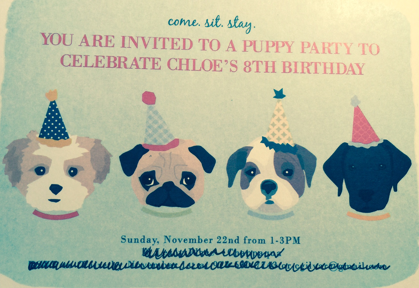 Puppy Parties Booked Parties